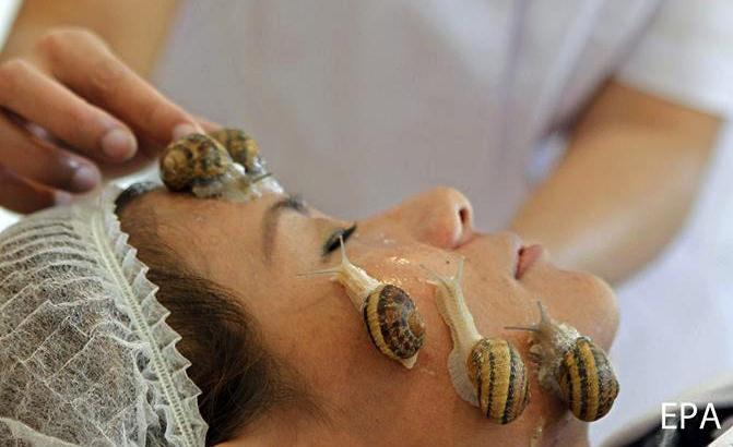 ตะลึง! SIAM SNAIL หอยทากไทยบำรุงดีสุดในโลก | Siam Snail