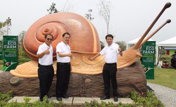 จุฬาฯ เปิดฟาร์มหอยทากเชิงนิเวศแห่งแรกในเอเชีย | สยามสเนล