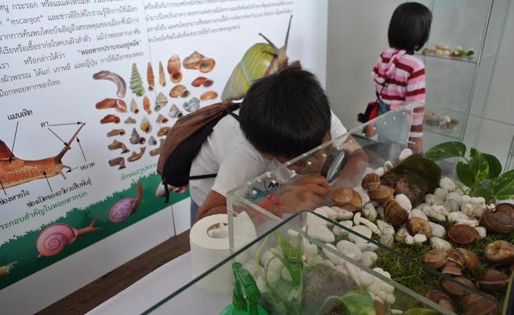 จุฬาฯ เปิดตัวฟาร์มหอยทากเชิงนิเวศแห่งแรกของเอเชีย